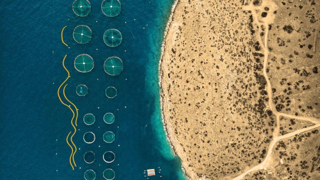 Bild einer Aquafarm von oben